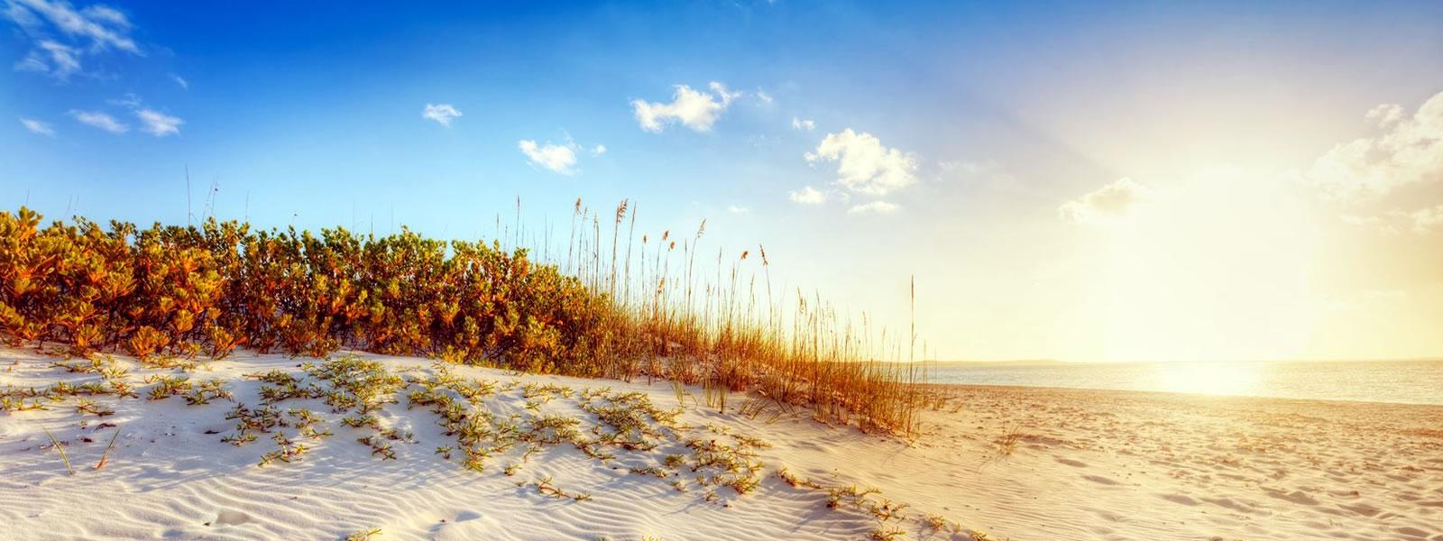 bg-beachdunes